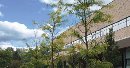 Jackson College (ミシガン州)