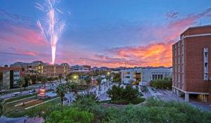 アリゾナ 大学